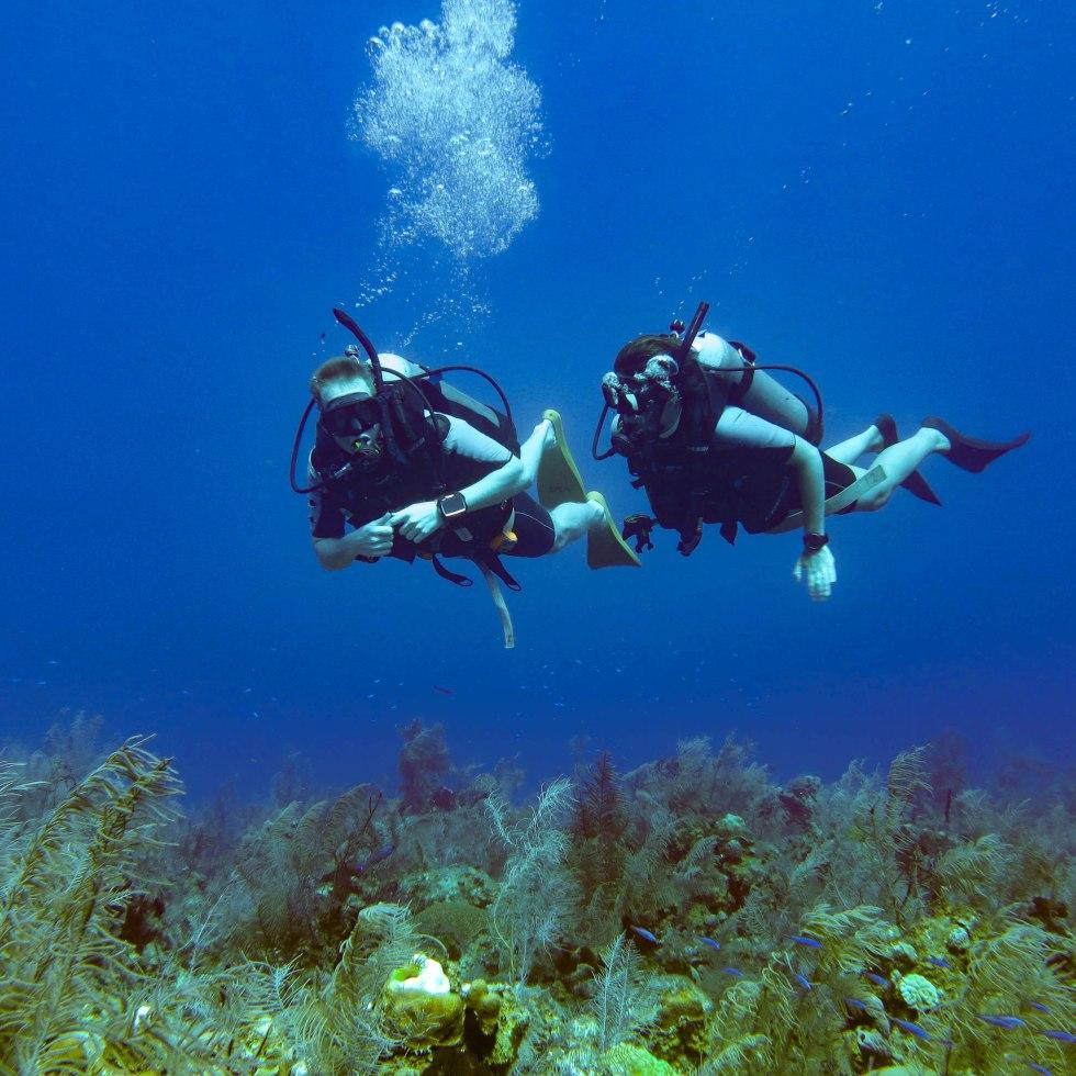 is-duiken-iets-voor-jou-2